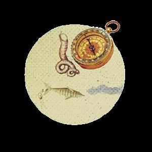 Illustration_Wikiahoi_Kompasskl